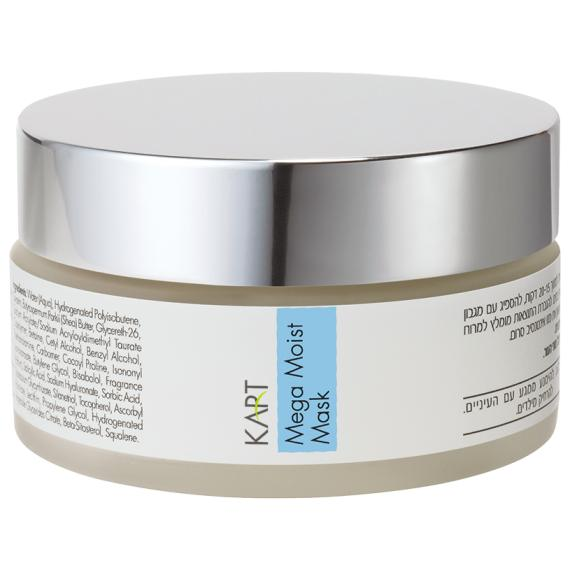 Meso Moisturizing Mask